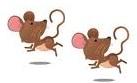 научно-познавательные сказки, Ушинский сказки для детей