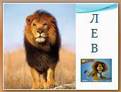 Животный мир саванн: лев