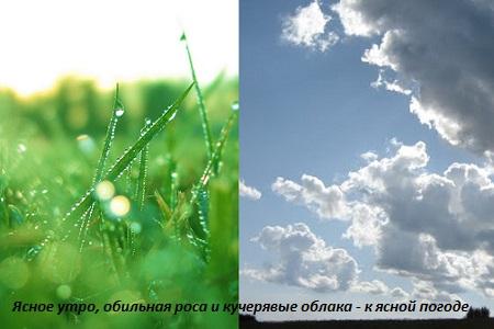 признаки ясной погоды